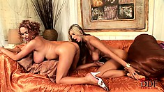 They dildo and vibrator get used in both holes of big titty lesbians