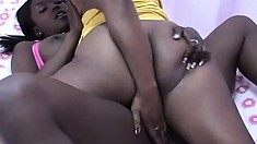 Adorable black lesbians share wild sexual tricks and experience intense pleasure