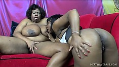 Horny lesbians with huge boobs get into some steamy fucking with a dildo