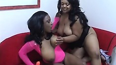 Black lesbian milfs with big natural hooters hook up on the couch to please each other