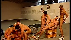Horny gay friends with awesome bodies enjoy lots of sucking and fucking