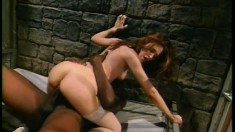 Charming and interesting babe Gwen Summers is fucked in prison room