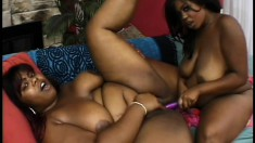 Big black booty wants to be licked and fingered by insatiable slut