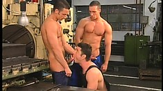 Hunky factory workers blow each other's big dicks and enjoy hot anal sex