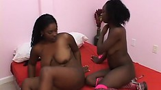 Juicy black broad gets her hairy pussy lapped up by a home girl