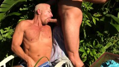 Insatiable gay stallions can't get enough of fucking like crazy
