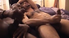 Two black thugs suck dick before they do a little mutual masturbation