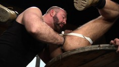 Bearded dude with a nose ring gets his cock sucked and ass fisted by a burly bear