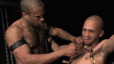 Submissive Guy Hangs On For A Throbbing Dick And A Rough Anal Banging