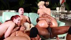 White Girls Loving Black Cock Group Sex Hardcore Interracial